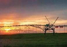 Lindsay_Zimmatic_Pivot_9500CC_GPS_Sunset